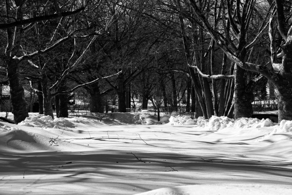 Brookdale Park in snow_