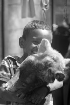 boy with laughing pig in the foco