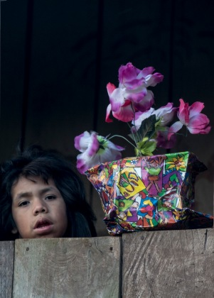 girl-with-flower-pot